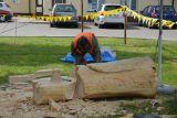 Plener Rzeźbiarski - dzień 2